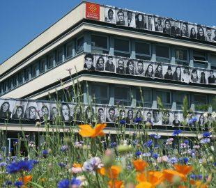 Inside Out verkefni í skóla í Toulouse í Frakklandi