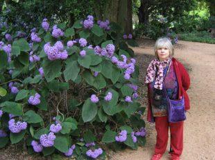 Í Botanic Gardens