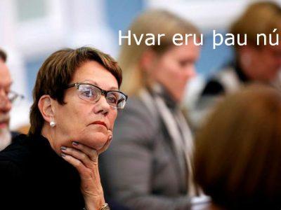 Ragnheiður Ríkharðsdóttir fyrrverandi alþingismaður