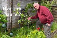 Hafsteinn Hafliðason garðyrkjufræðingur